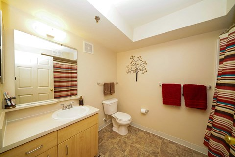 Full Bathroom at Fieldstream Apartment Homes, Ankeny, Iowa