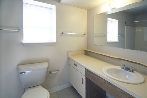 Large Bathroom Vanity Area at Orchard Lakes Apartments, Toledo, OH