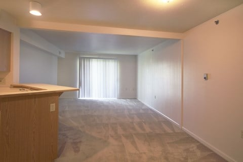 Carpeting Throughout Living/Dining Area at Orchard Lakes Apartments, Toledo, Ohio