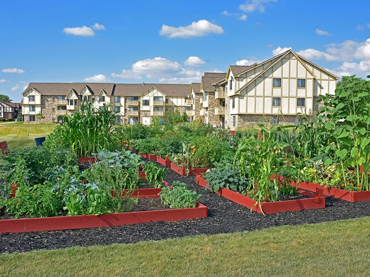 Community Gardens at Thornridge Apartments, Grand Blanc, MI