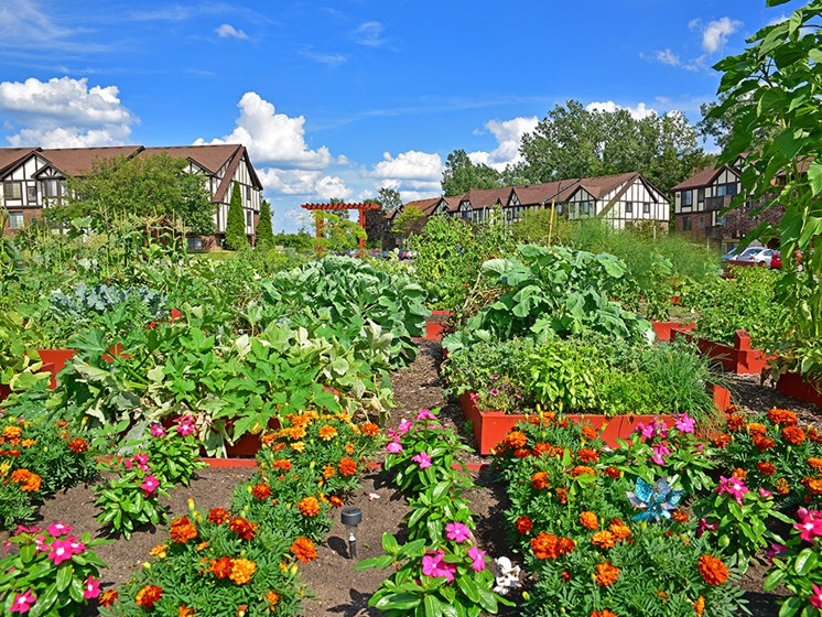 Beautiful Garden at Shannon Manor Townhouses, Davison, 48423