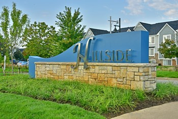 31071 Lakeview Blvd. 1-2 Beds Apartment for Rent Photo Gallery 1