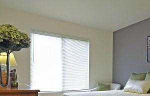 504 Maplebrook Lane Studio-2 Beds Apartment for Rent Photo Gallery 1