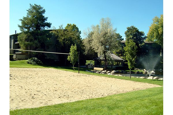 volleyball lifestyle apartments