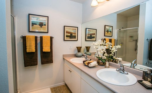 Spacious Model Bathroom in Apartment in Downtown Portland Suburb