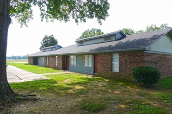551 Banks Street 1-3 Beds Apartment for Rent Photo Gallery 1