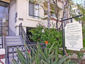 3825 McLaughlin Ave 1-2 Beds Apartment for Rent Photo Gallery 1