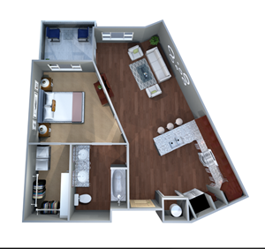 1 C.1 Floor Plan, One Bed and Bath, Discovery at the Realm (Castle Hills)