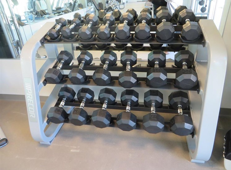 Free Weight Rack in Gym at Discovery at the Realm (Castle Hills), Lewisville, TX