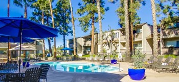 5560 Shasta Lane 1-2 Beds Apartment for Rent Photo Gallery 1