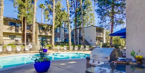 Shasta Lane Apartments Lifestyle - Pool Deck & Pool