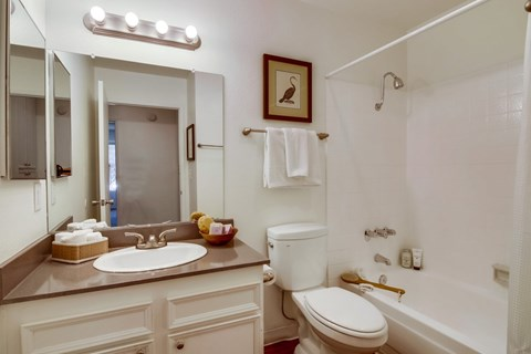 Shasta Lane Apartments Furnished Apartment Bathroom