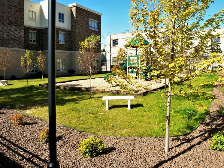 Playground & Yard
