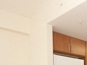 1 Bedroom Apartment- Kitchen