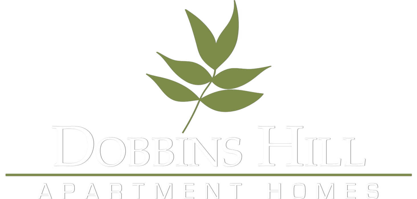 Dobbins Hill Apartments in Chapel Hill, NC