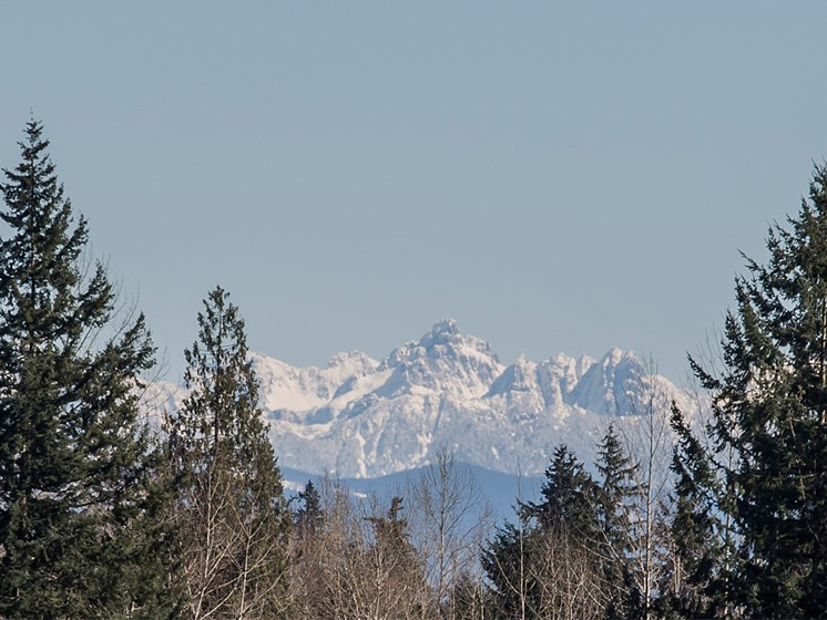 View of the Cascade Mountains
