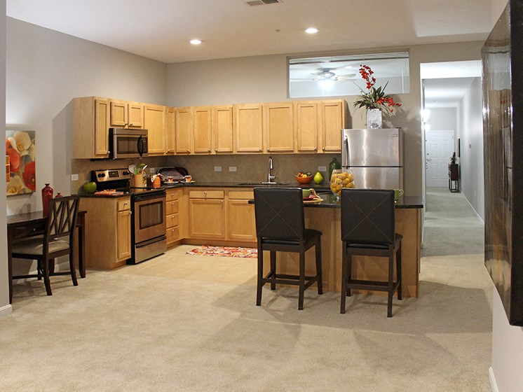 The Resideces at 668 Standard Model Kitchen at The Residences at 668, Ohio, 44114