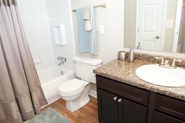greenville, sc, rentals, model, sterling pelham, apartments, bathroom, features