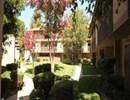 Wilbur Oaks Apartments Community Thumbnail 1