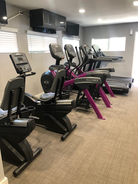 Fitness Center featuring CYBEX and Life Fitness equipment