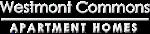 Asheville Property Logo 0