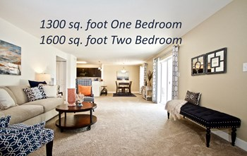 4217 South Plaza Trl 1-2 Beds Apartment for Rent Photo Gallery 1