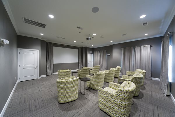 Katie Manor Movie Room