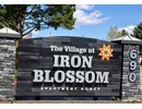 Village at Iron Blossom Community Thumbnail 1