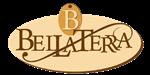 Vista Property Logo 94