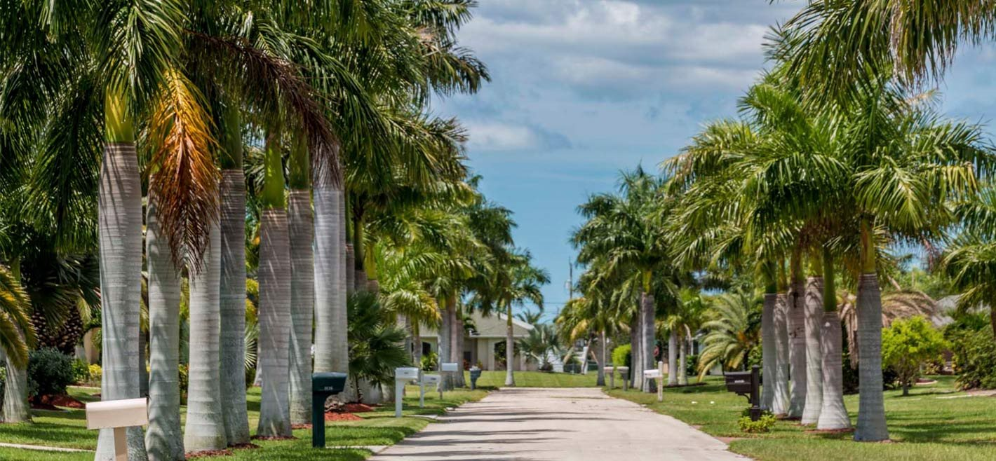 Wellington Apartments In Clearwater Fl