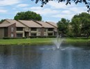 Carrollwood Station Community Thumbnail 1