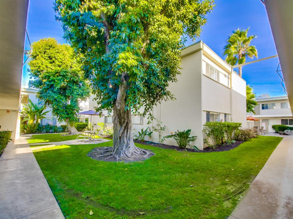 Beautiful Landscaping at Alberts College Apartments, 5460 55th Street, San Diego, CA, 92115