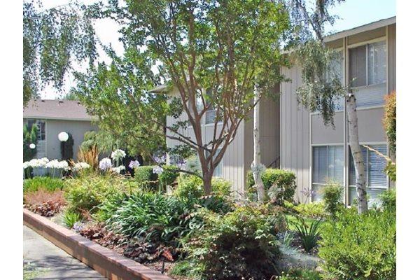 Exterior view at Bella Vista Apartments  Napa  California. Bella Vista Apartment Homes  713 Trancas Street  Napa  CA   RENTCaf