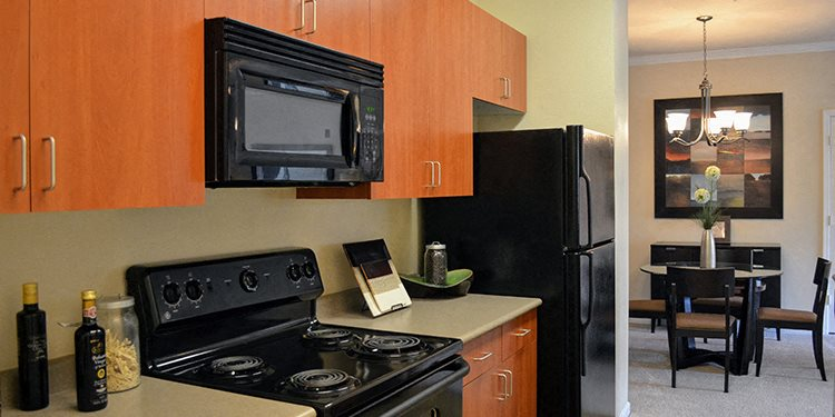 Energy-efficient black GE appliances at Waterstone Apartment Homes, Tracy, CA