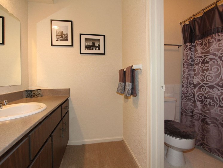 Furnished Bathroom