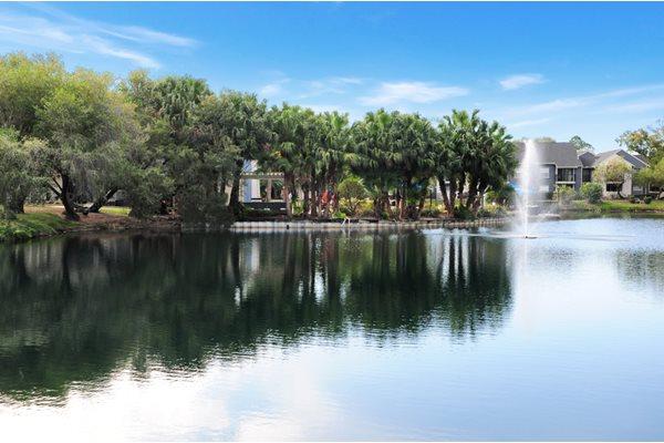 Lake View | Avesta Bay Crossing Apartments Tampa, Fl