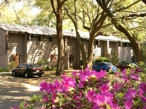 Bridgelight Town Homes - Apartments in Gainesville, FL