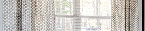Alpharetta banner 1