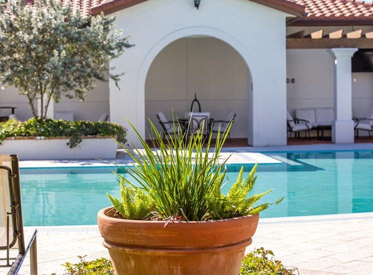 2940 Solano at Monterra apartments swimming pool in Cooper City, Florida
