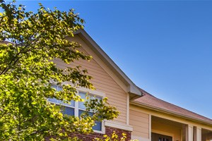mature trees and landscaping at The Village on Spring Mill apartments in Carmel IN