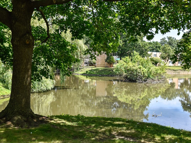 Private pond at Harbor Lake Apartments in Waukegan, IL