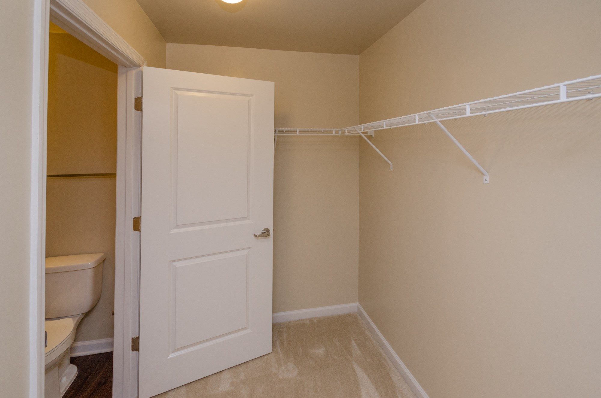large walk in closet with carpet