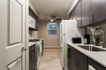 38 Jenkins Ave Studio-2 Beds Apartment for Rent Photo Gallery 1