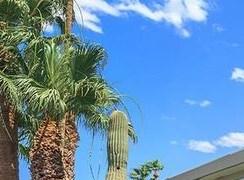 Scottsdale homepagegallery 1