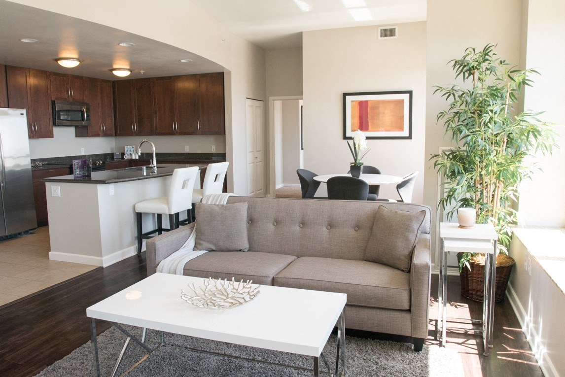 Downtown Sacramento CA Apartments-Penthouses at Capitol Park Living Room