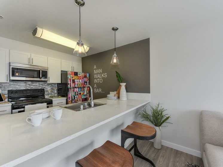 Luxury Apartment Community Kitchen with Stainless Steel Appliances and Bar Seating