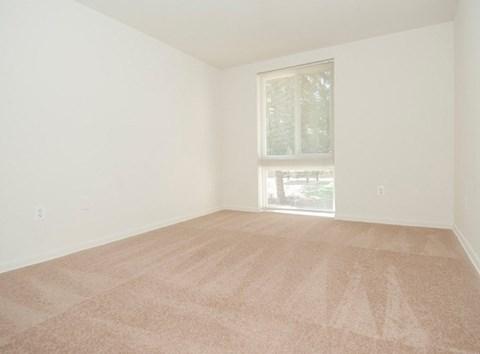 Big Carpeted Room at Fairway, Reston, VA,20190