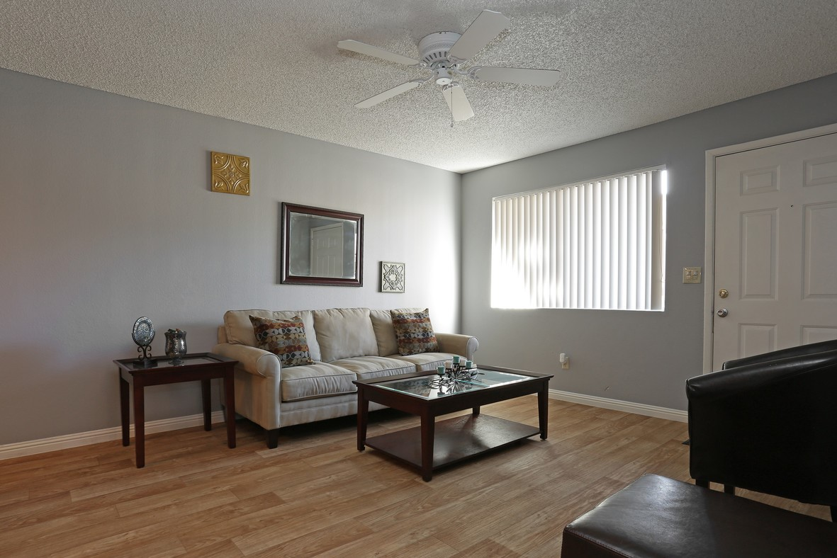 The Paragon Apartments photogallery 5