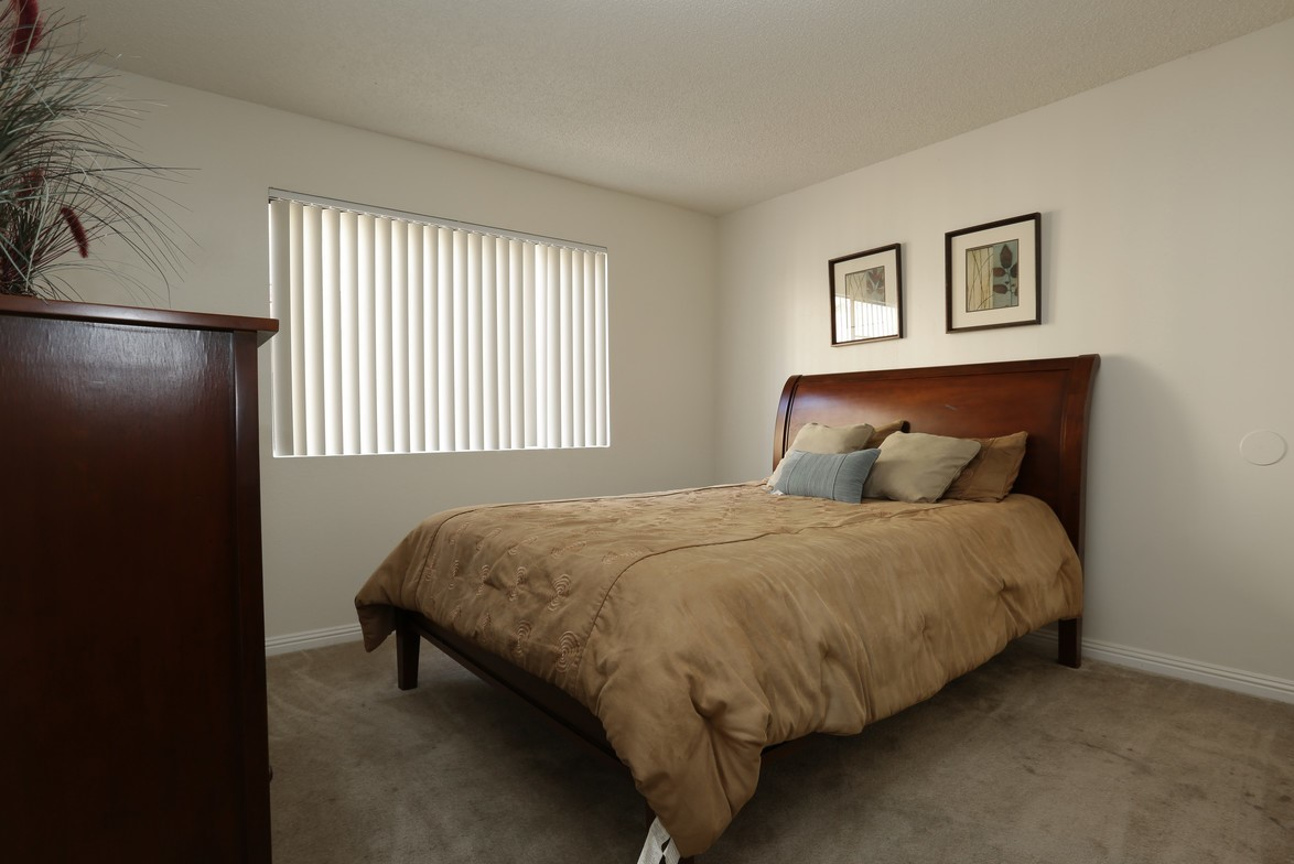 The Paragon Apartments photogallery 7