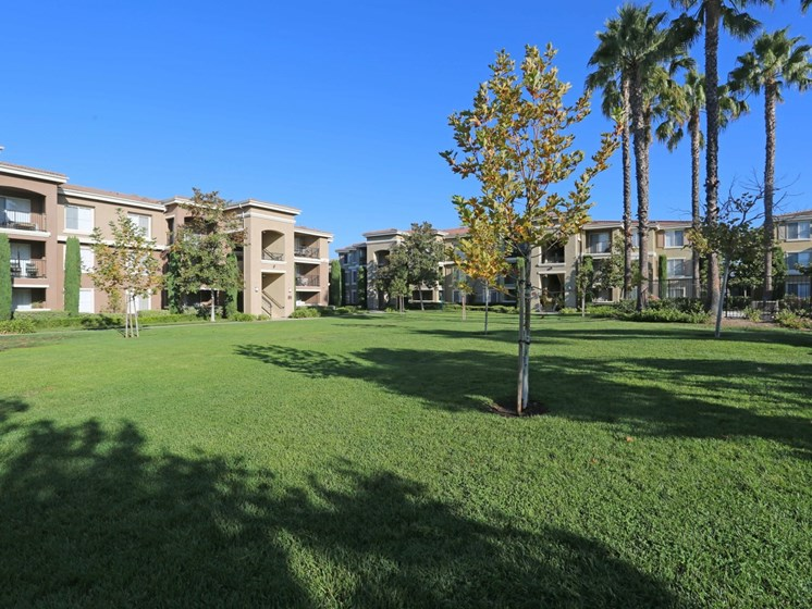 Green Grounds | Waterstone at Moorpark in Moorpark apts for rent